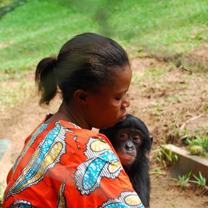 Заповедник обезьян бонобо