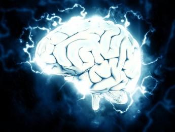 изображение какие бывают склады ума