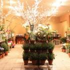 Советы с чего начать цветочный бизнес
