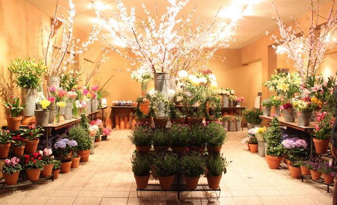 Доставка цветов начать свой бизнес самый тупой подарок на 8 марта