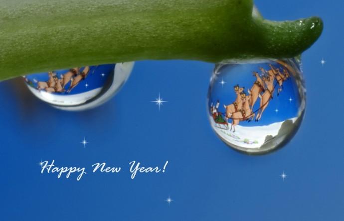Удивительное и неизвестное про Новый Год
