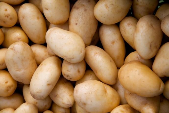 """фото """"Картофель"""""""