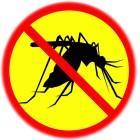 Борьба с комарами народными средствами