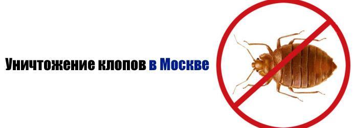 уничтожение клопов в Москве