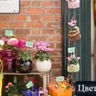 Как создать цветочный бизнес с нуля?