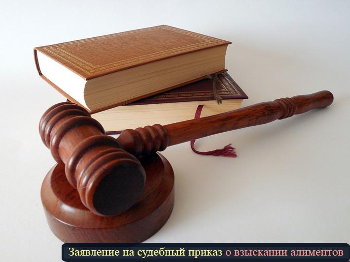 """фото """"Заявление на судебный приказ о взыскании алиментов"""""""