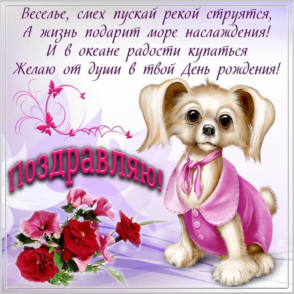 Картинка на День рождения с розами и пёсиком