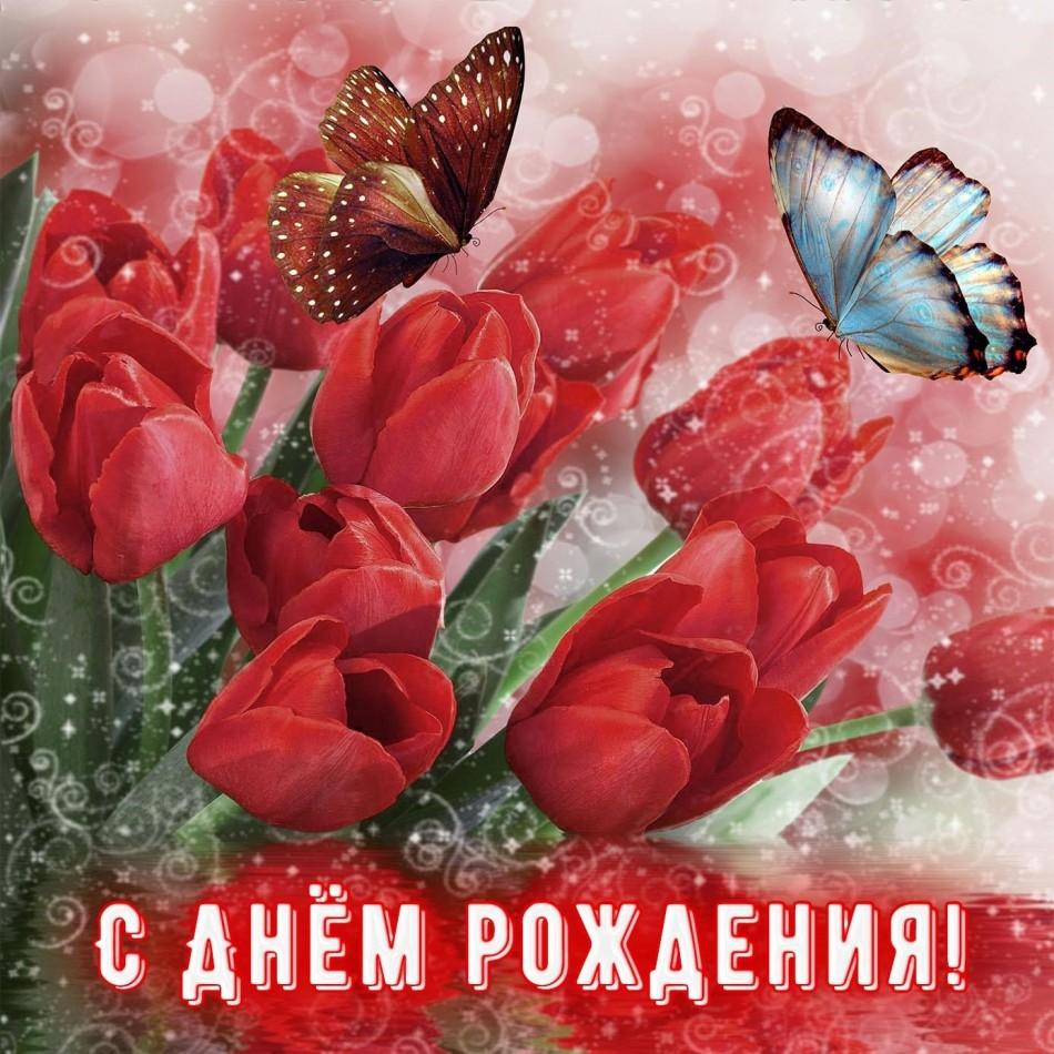 Картинка с бабочками на тюльпанах