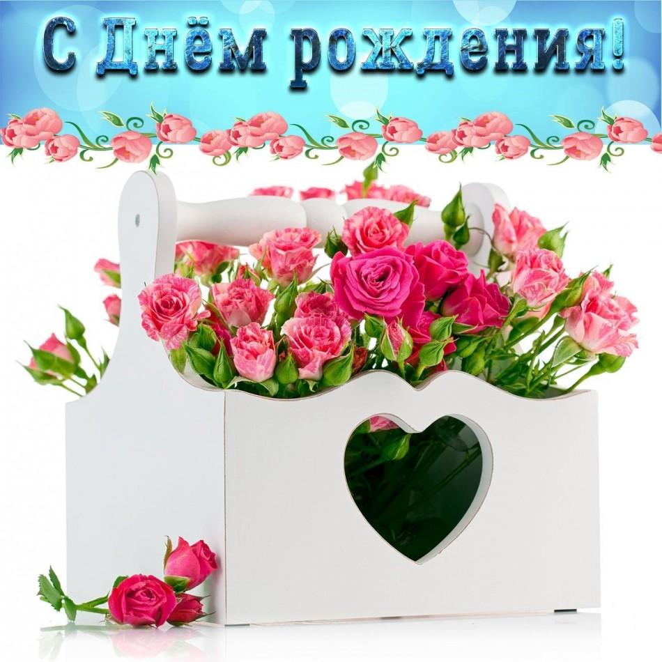 Картинка с розами на День рождения девушке