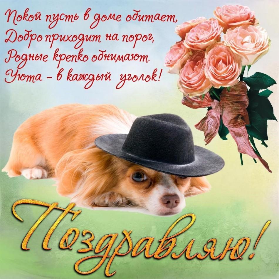 Картинка с собачкой в шляпке на День рождения