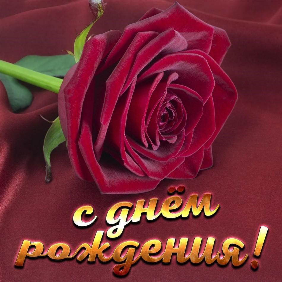 Открытка для женщины с красной розой