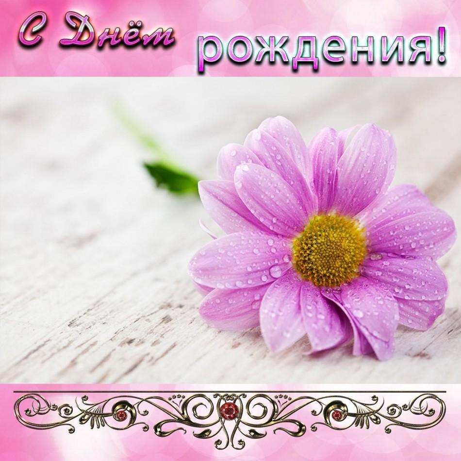 Открытка с красивым цветком для девушки