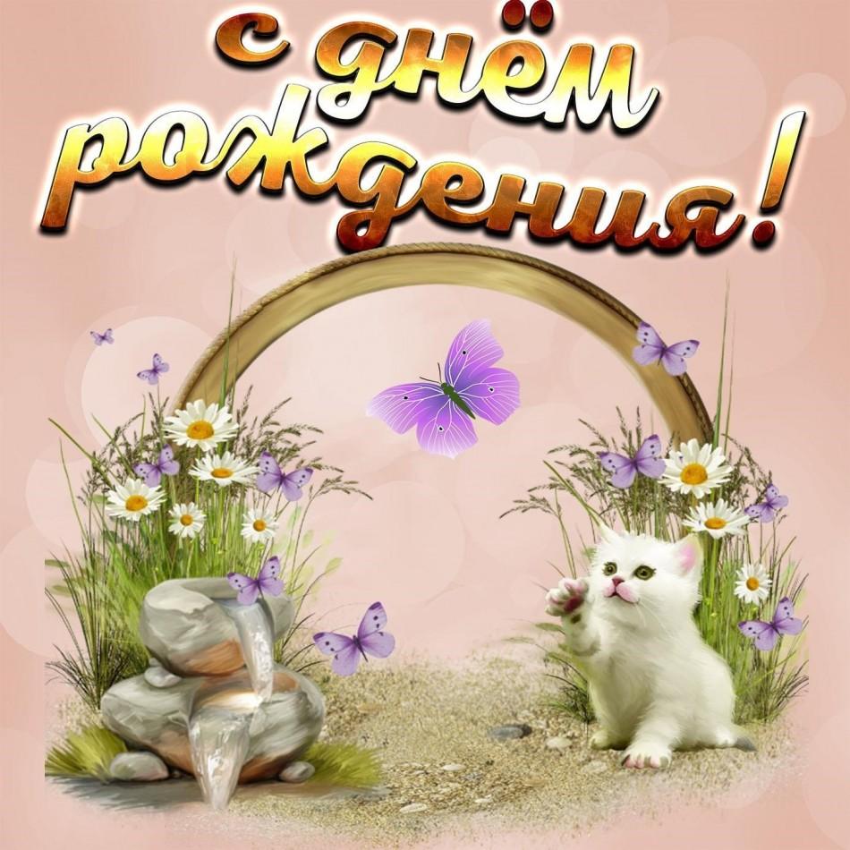 Открытка с милым котиком и бабочкой