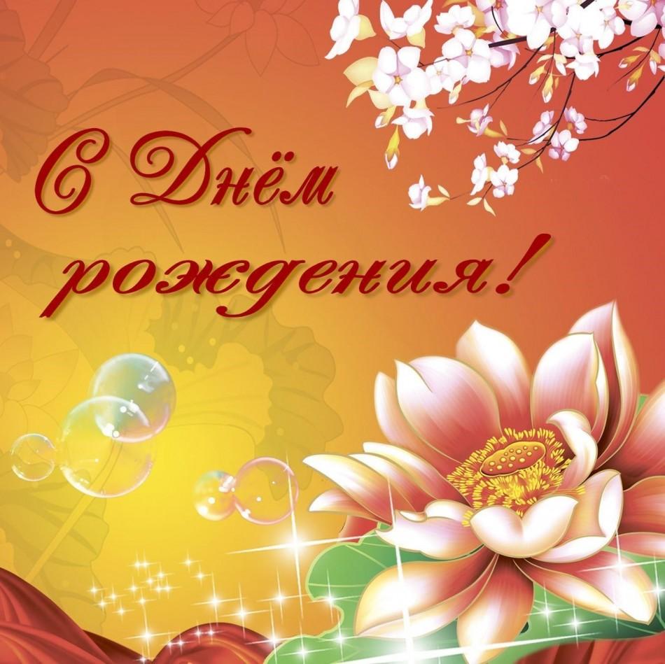 Открытка с розой на красивом фоне