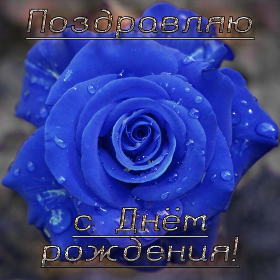 Сказочная роза на картинке для девушки